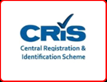 CRiS total loss re-registration